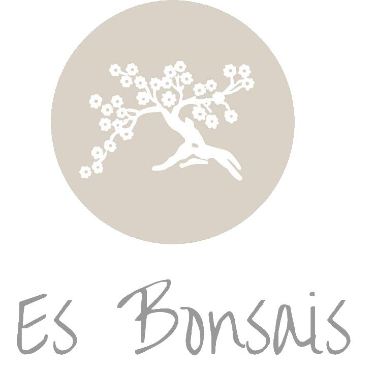 Floristería Es Bonsais Menorca